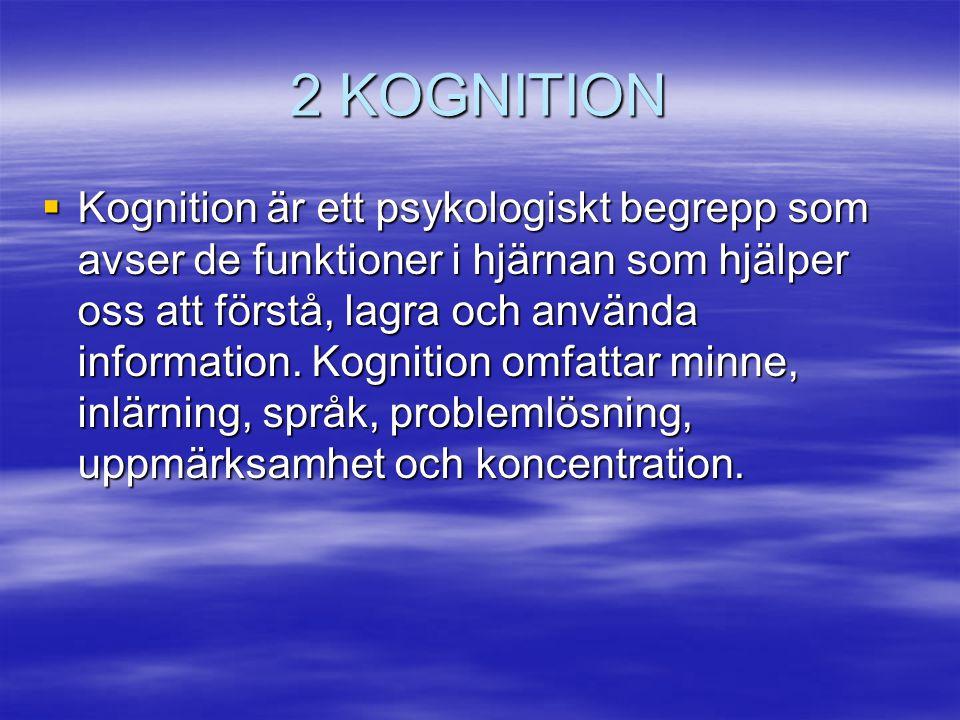 2 KOGNITION