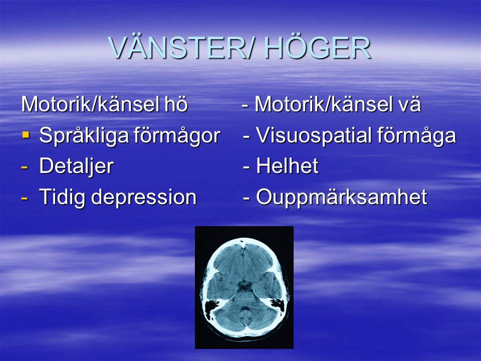 VÄNSTER/ HÖGER Motorik/känsel hö - Motorik/känsel vä
