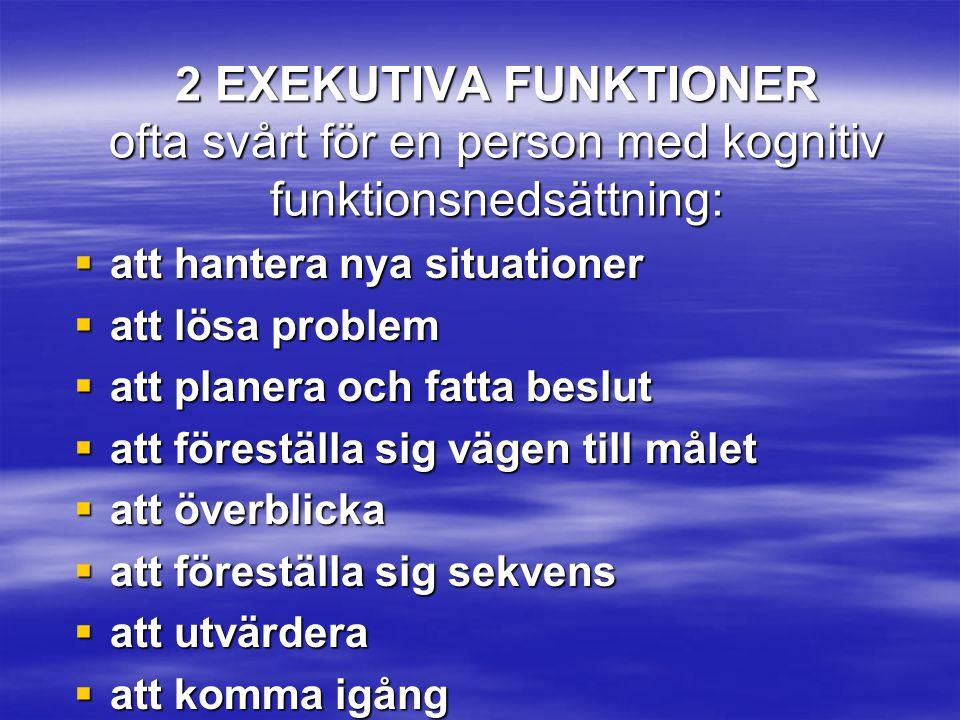 2 EXEKUTIVA FUNKTIONER ofta svårt för en person med kognitiv funktionsnedsättning: