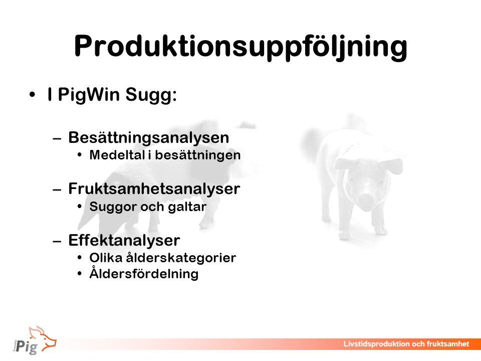 Produktionsuppföljning
