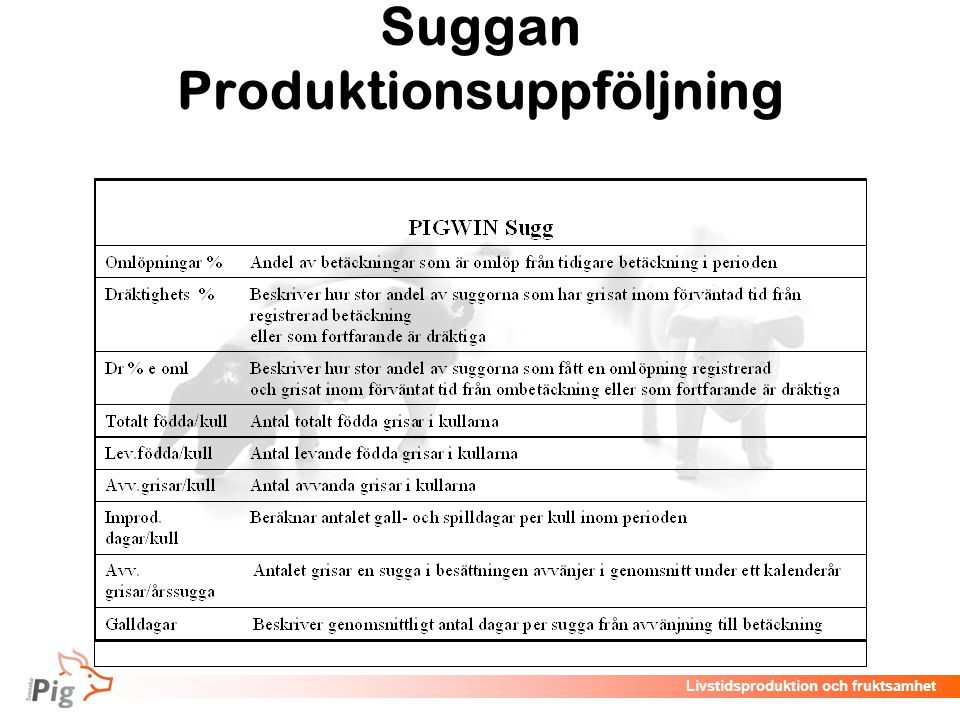 Suggan Produktionsuppföljning