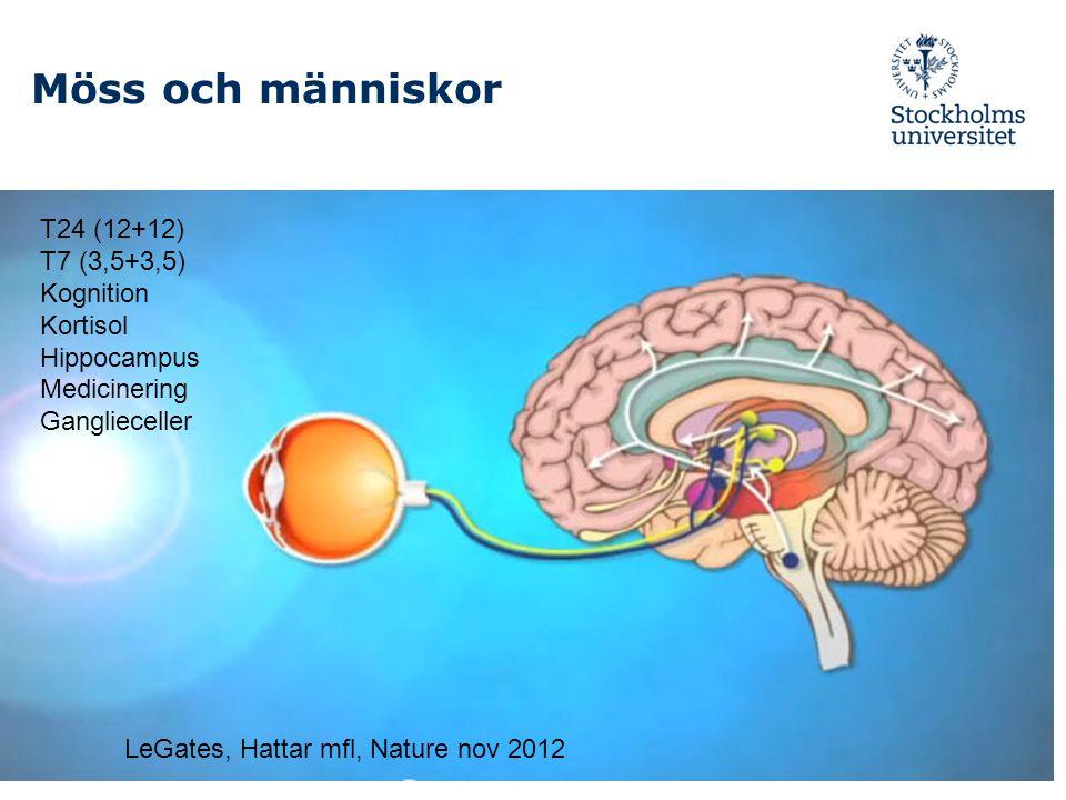 Möss och människor T24 (12+12) T7 (3,5+3,5) Kognition Kortisol