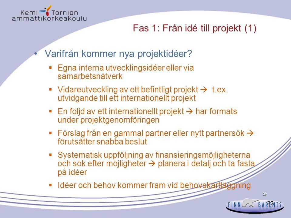 Fas 1: Från idé till projekt (1)
