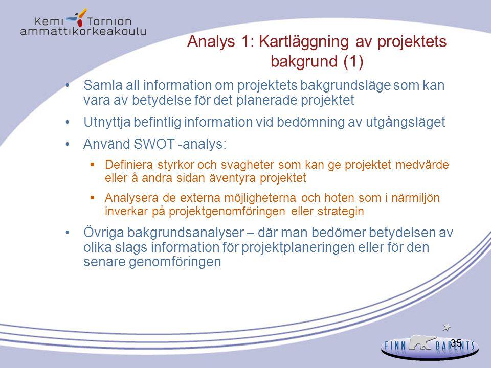 Analys 1: Kartläggning av projektets bakgrund (1)