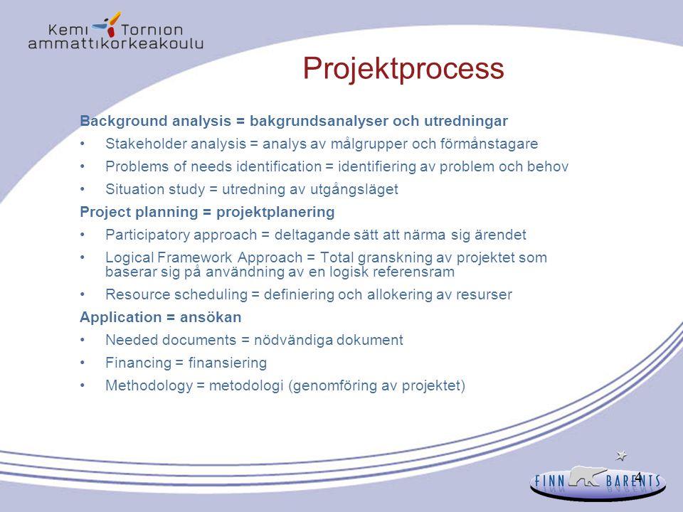 Projektprocess Background analysis = bakgrundsanalyser och utredningar