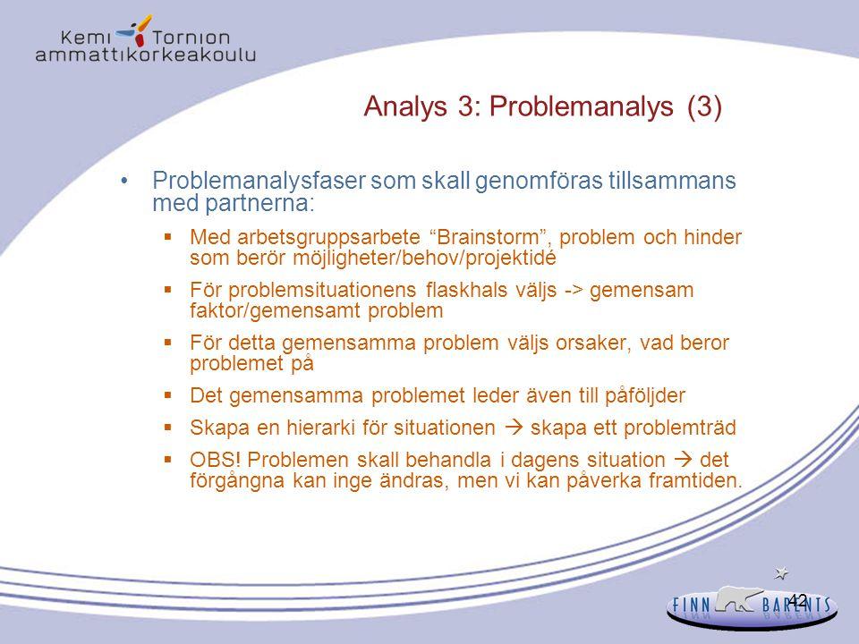Analys 3: Problemanalys (3)