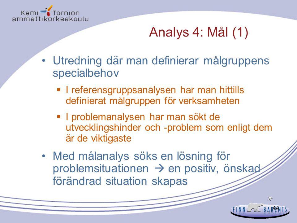 Analys 4: Mål (1) Utredning där man definierar målgruppens specialbehov.