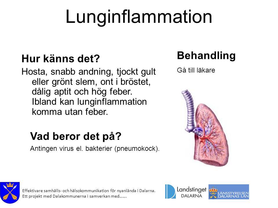 Lunginflammation utan feber