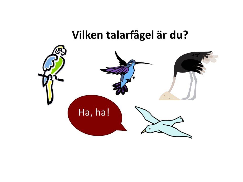 Vilken talarfågel är du