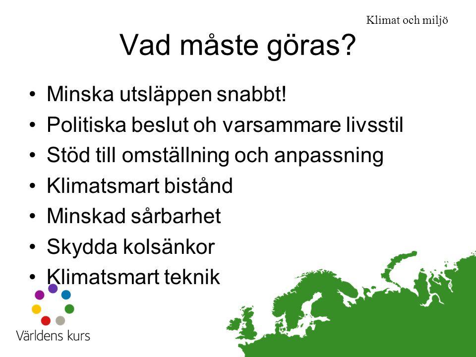 Vad måste göras Minska utsläppen snabbt!