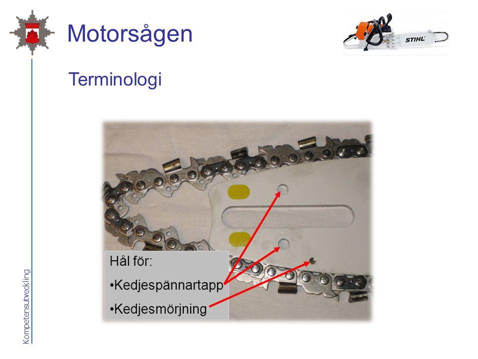 Motorsågen Terminologi Hål för: Kedjespännartapp Kedjesmörjning