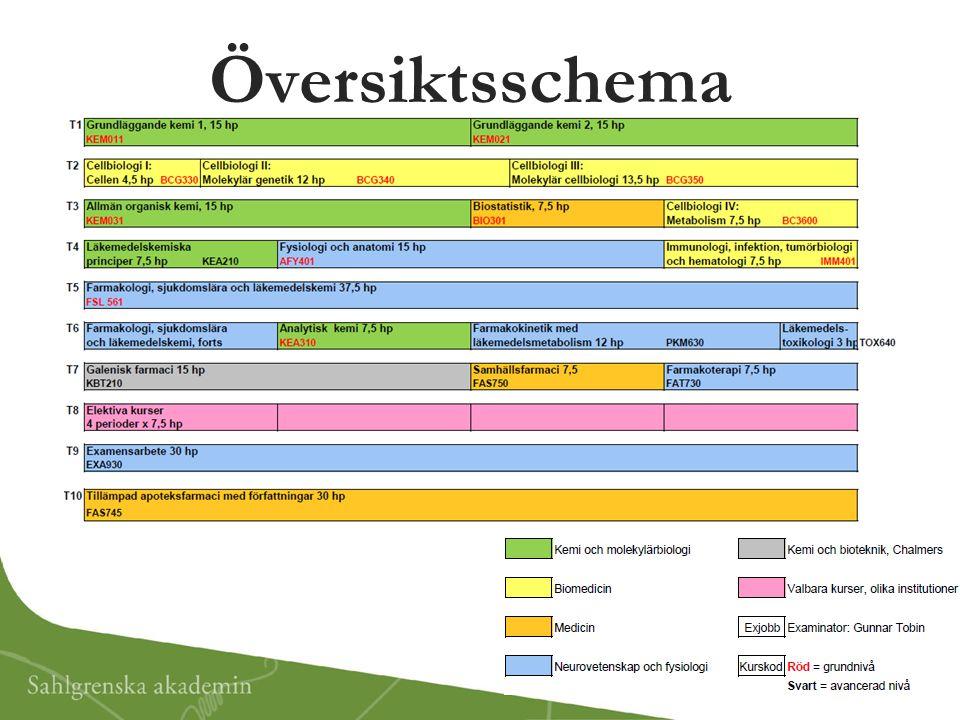 Översiktsschema *