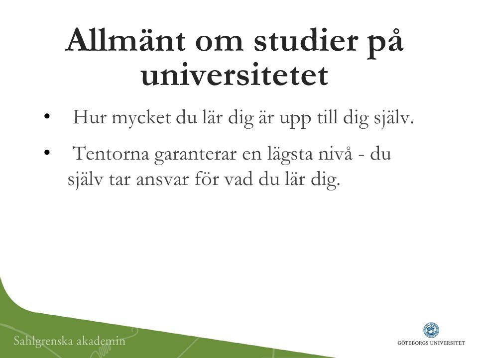 Allmänt om studier på universitetet