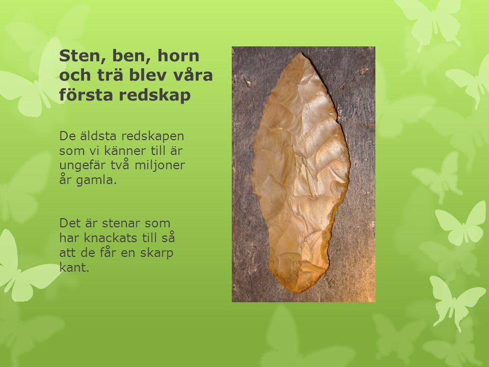 Sten, ben, horn och trä blev våra första redskap