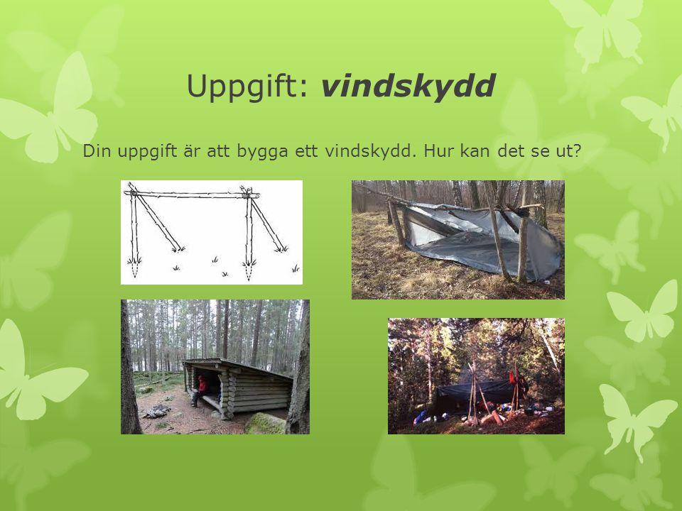 Uppgift: vindskydd Din uppgift är att bygga ett vindskydd. Hur kan det se ut