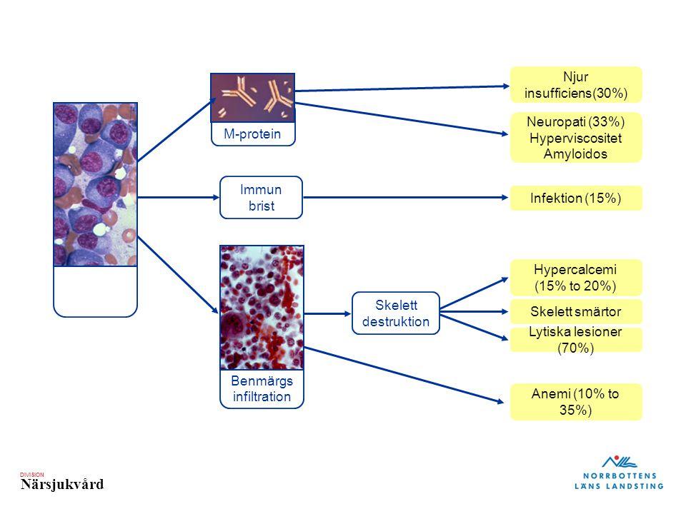 Njur insufficiens(30%) M-protein Neuropati (33%) Hyperviscositet