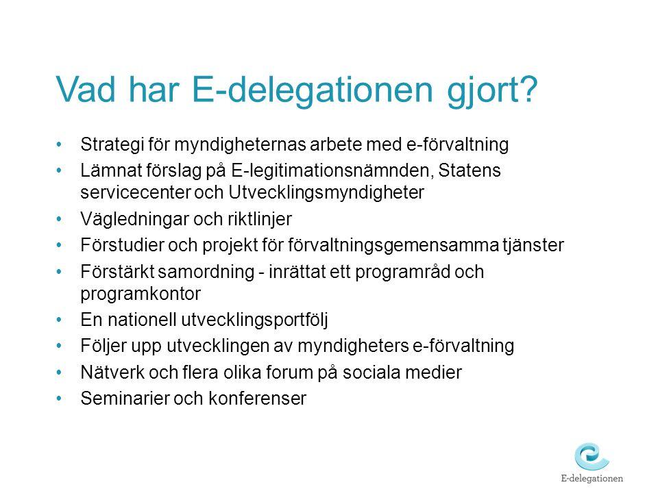 Vad har E-delegationen gjort