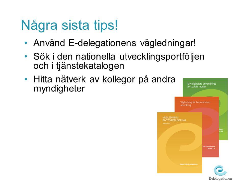Några sista tips! Använd E-delegationens vägledningar!