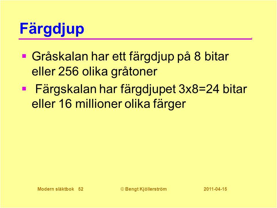 Färgdjup Gråskalan har ett färgdjup på 8 bitar eller 256 olika gråtoner.