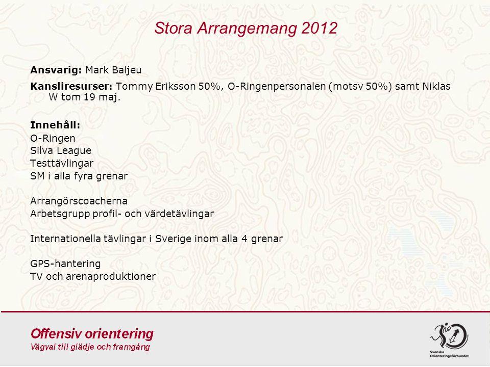 Stora Arrangemang 2012 Ansvarig: Mark Baljeu