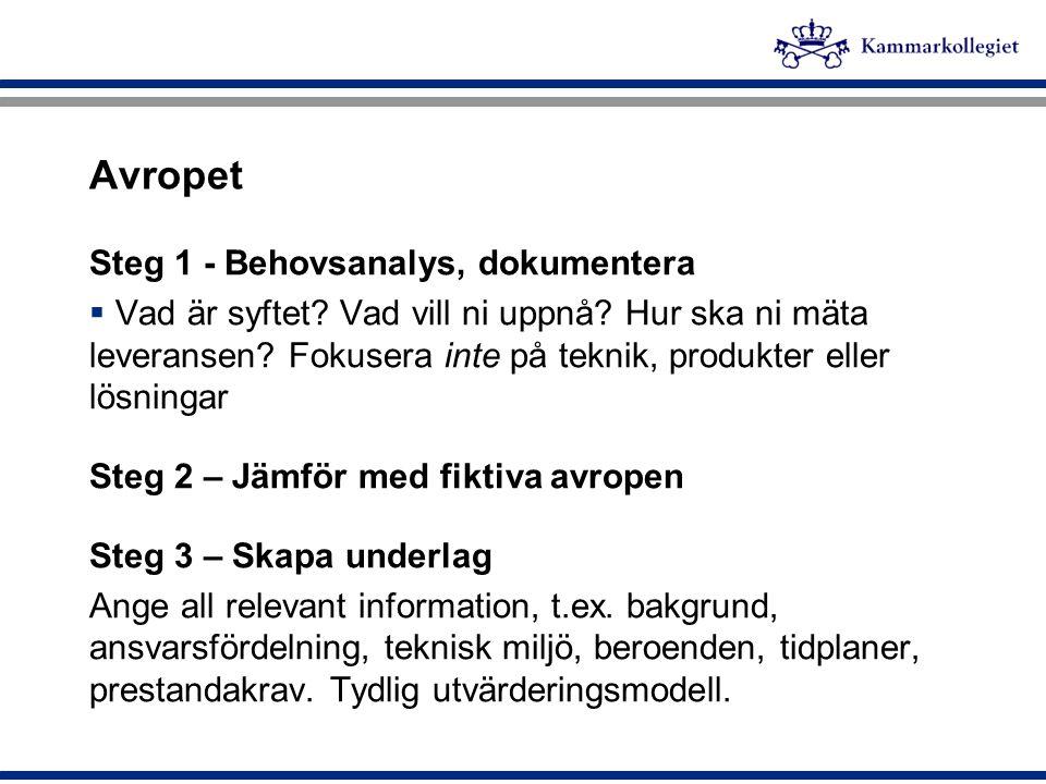 Avropet Steg 1 - Behovsanalys, dokumentera