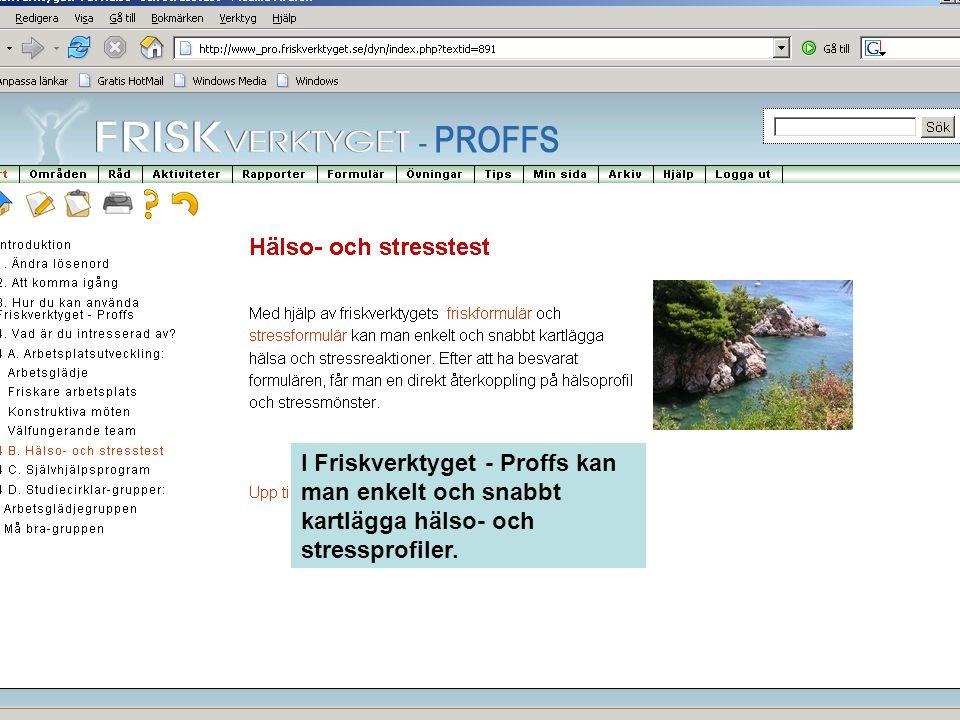 I Friskverktyget - Proffs kan man enkelt och snabbt kartlägga hälso- och stressprofiler.