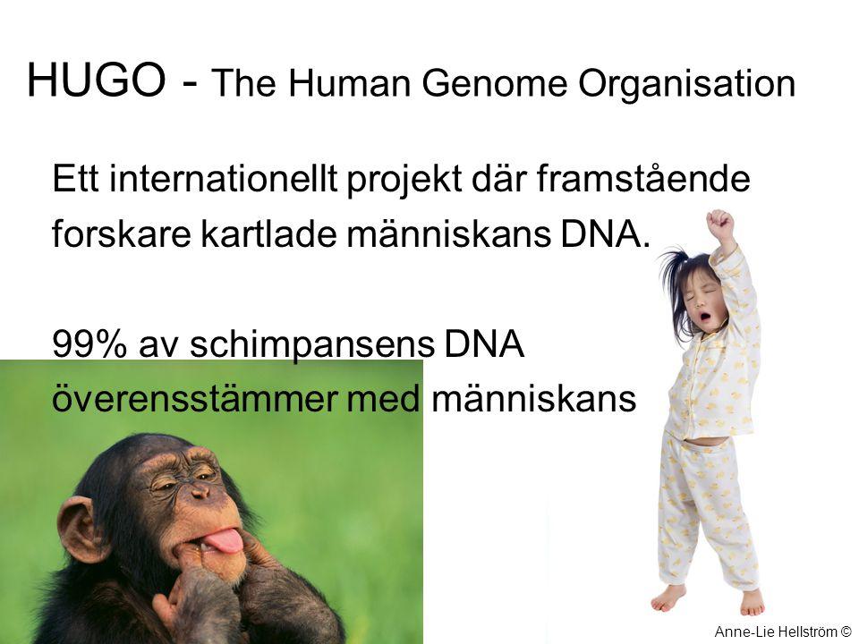 HUGO - The Human Genome Organisation