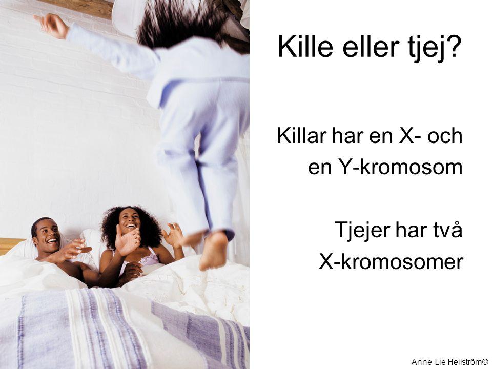 Kille eller tjej Killar har en X- och en Y-kromosom Tjejer har två