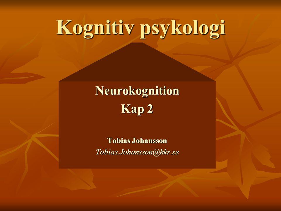 Kognitiv psykologi Neurokognition Kap 2 Tobias Johansson