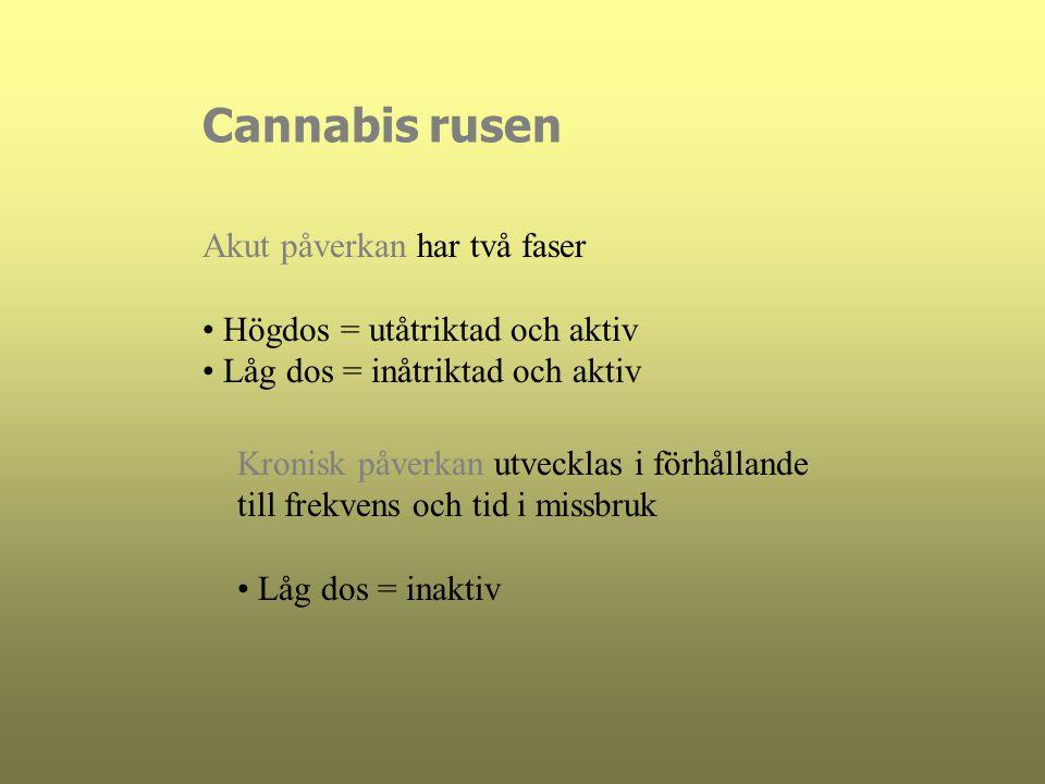 Cannabis rusen Akut påverkan har två faser