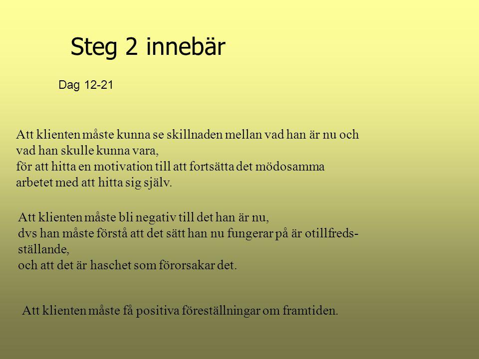Steg 2 innebär Dag 12-21. Att klienten måste kunna se skillnaden mellan vad han är nu och vad han skulle kunna vara,