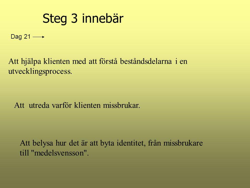 Steg 3 innebär Att hjälpa klienten med att förstå beståndsdelarna i en