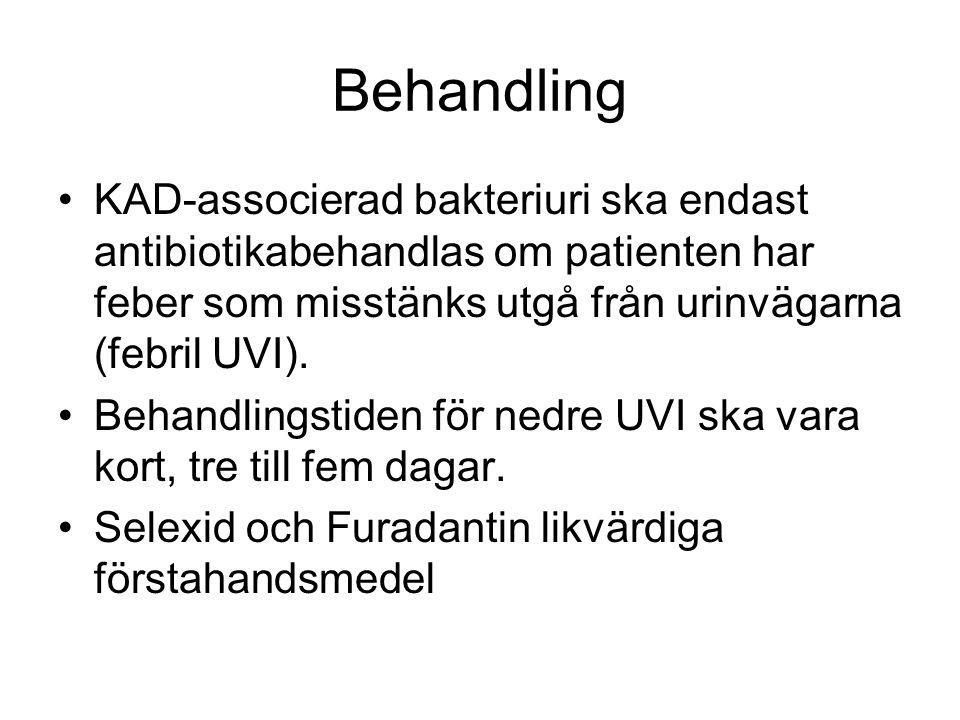Behandling KAD-associerad bakteriuri ska endast antibiotikabehandlas om patienten har feber som misstänks utgå från urinvägarna (febril UVI).