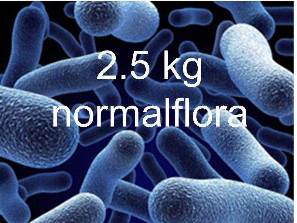 2.5 kg normalflora