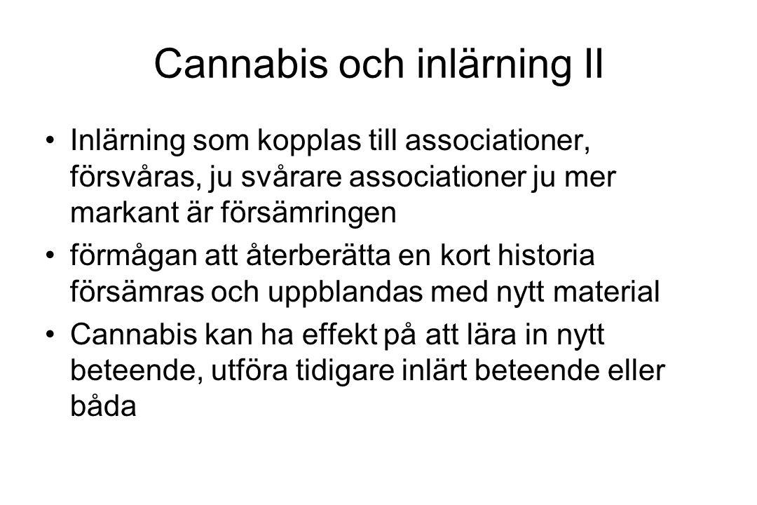Cannabis och inlärning II