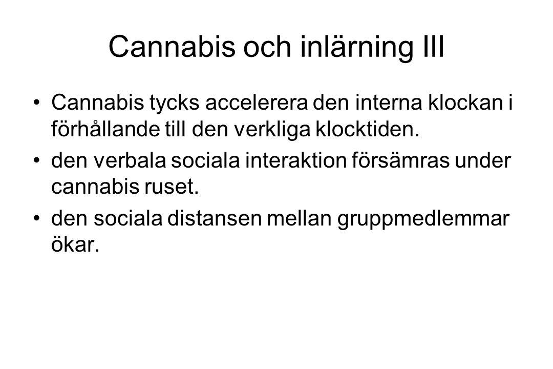 Cannabis och inlärning III