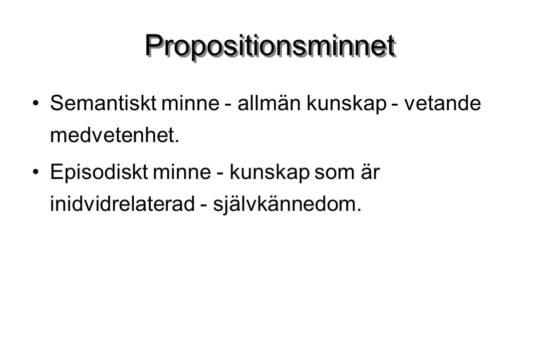 Propositionsminnet Semantiskt minne - allmän kunskap - vetande medvetenhet.