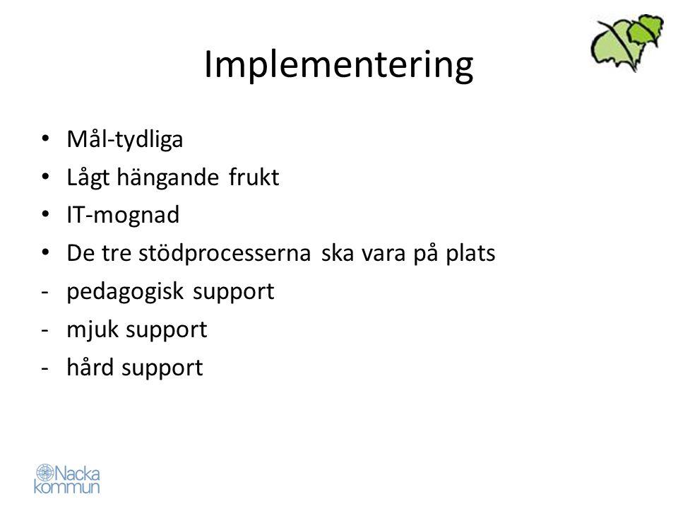Implementering Mål-tydliga Lågt hängande frukt IT-mognad