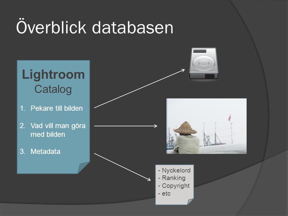 Överblick databasen Lightroom Catalog Pekare till bilden