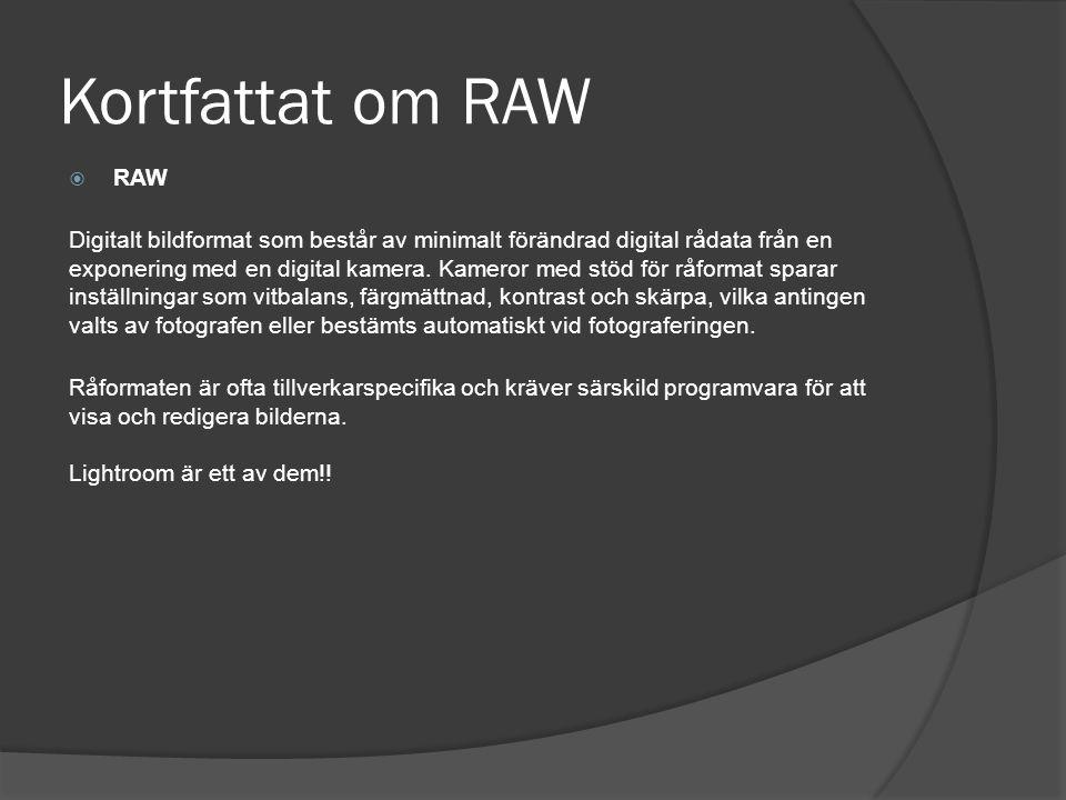 Kortfattat om RAW RAW.