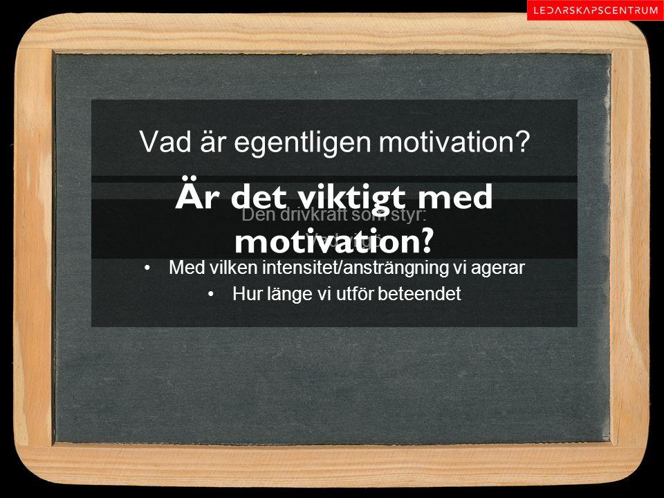 Vad är egentligen motivation