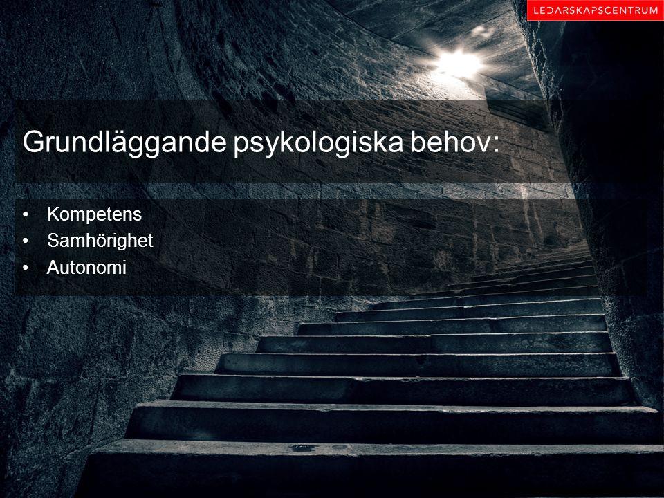 Grundläggande psykologiska behov: