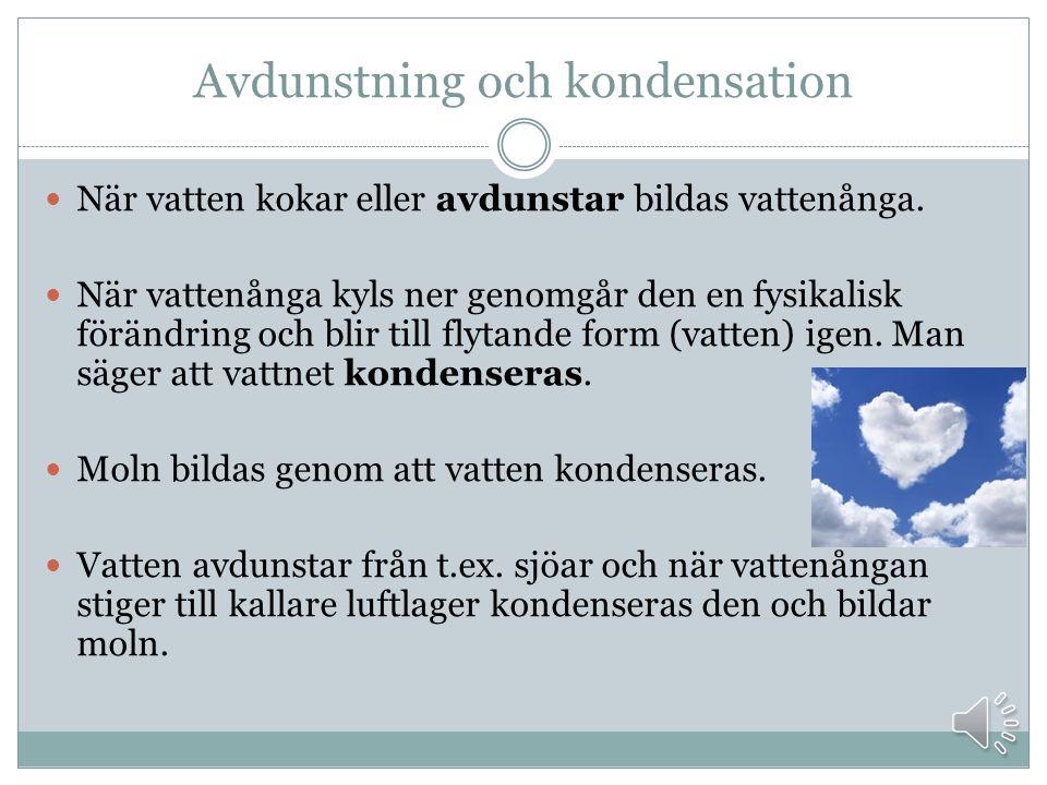 Avdunstning och kondensation