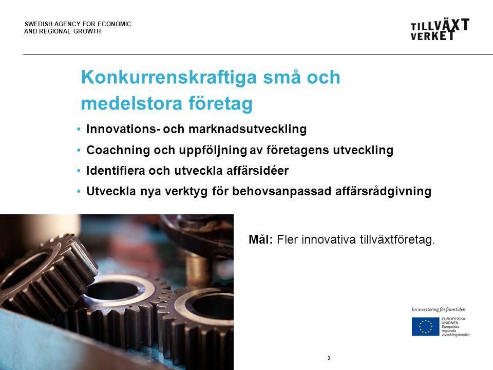 Konkurrenskraftiga små och medelstora företag