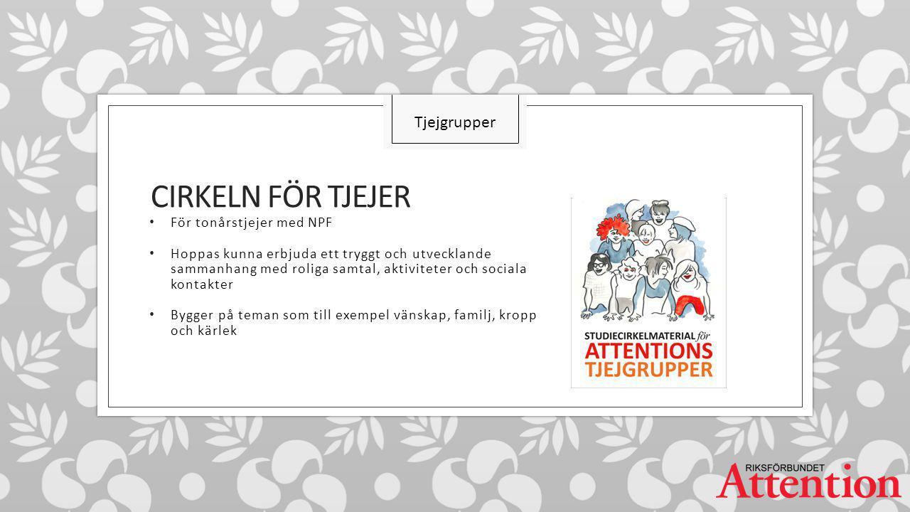 Cirkeln för TJEJER Tjejgrupper För tonårstjejer med NPF