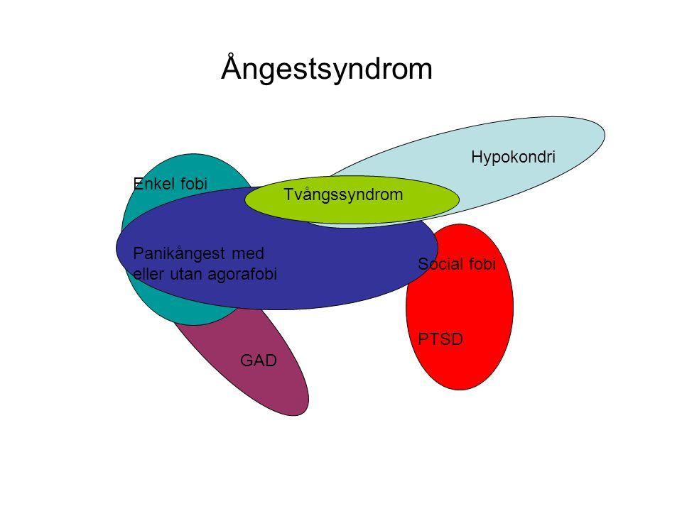 Ångestsyndrom Hypokondri Enkel fobi Tvångssyndrom