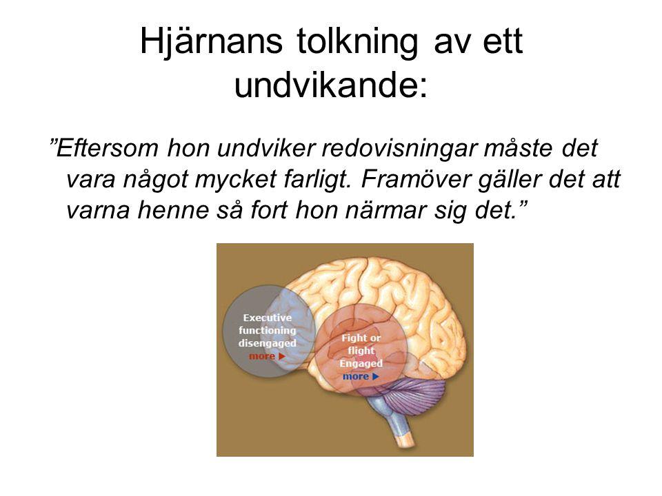Hjärnans tolkning av ett undvikande: