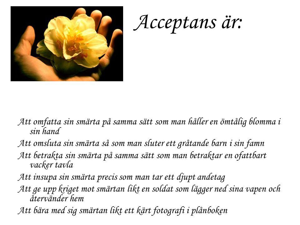 Acceptans är: Att omfatta sin smärta på samma sätt som man håller en ömtålig blomma i sin hand.