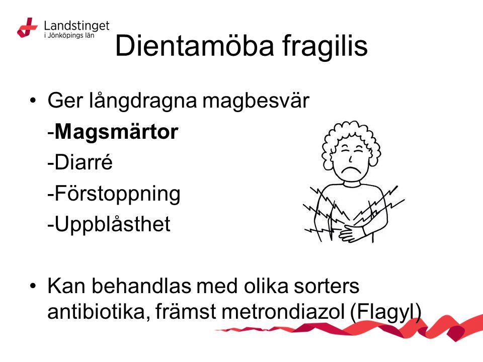 Dientamöba fragilis Ger långdragna magbesvär -Magsmärtor -Diarré