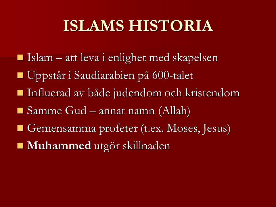 ISLAMS HISTORIA Islam – att leva i enlighet med skapelsen